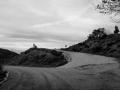 Γιάννα Καραδήμα - To on the road again- Willie-Nelson.jpg