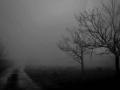 Μαρία Στάμου - Ed Sheeran - Make it Rain