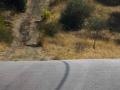 Χαράλαμπος Πασβαντίδης - Angelo Badalamenti - Mulholland Drive Main Theme