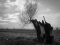 Χαράλαμπος Πασβαντίδης - Evanescence - Bring Me To Life