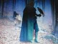 Αναστασίου Ελένη - Το Γεράκι και ο Λϋκος (2)